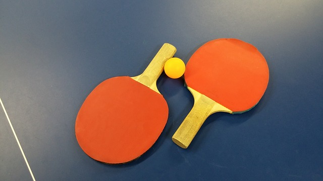 Kettler Advantage Indoor Table Tennis Paddle Bundle